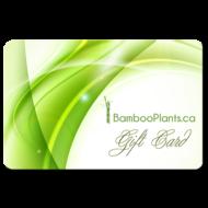 gift card 190x190 - Gift Card