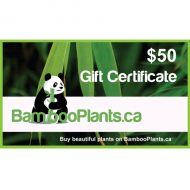 50 bambooplants gift certificate 190x190 - Gift Card - $50