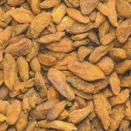 lycium barbarum amber sweet goji 190x190 - Lycium barbarum 'AMBER SWEET'